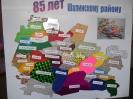 День рождения поселка и День семьи отметили в п.Шамары_12