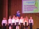 I-й районный патриотический фестиваль _14